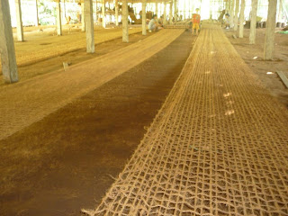 anti-erosion netting made of coconut husk fibers