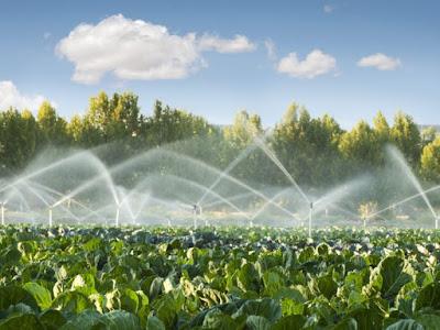 Água virtual, consumo de água, consumo consciente de água, racionamento de água, água na indústria, economizar água, dicas para economizar água, água, água no agronegócio