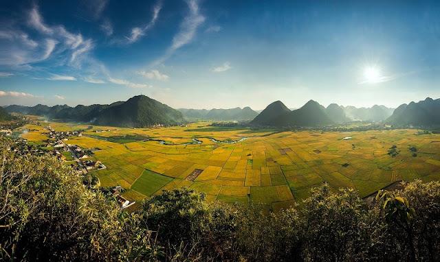Vietnam is wonderful in ripen rice season 1