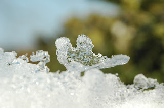 blogdepoesia-poesia-miguel-angel-cervantes-invierno