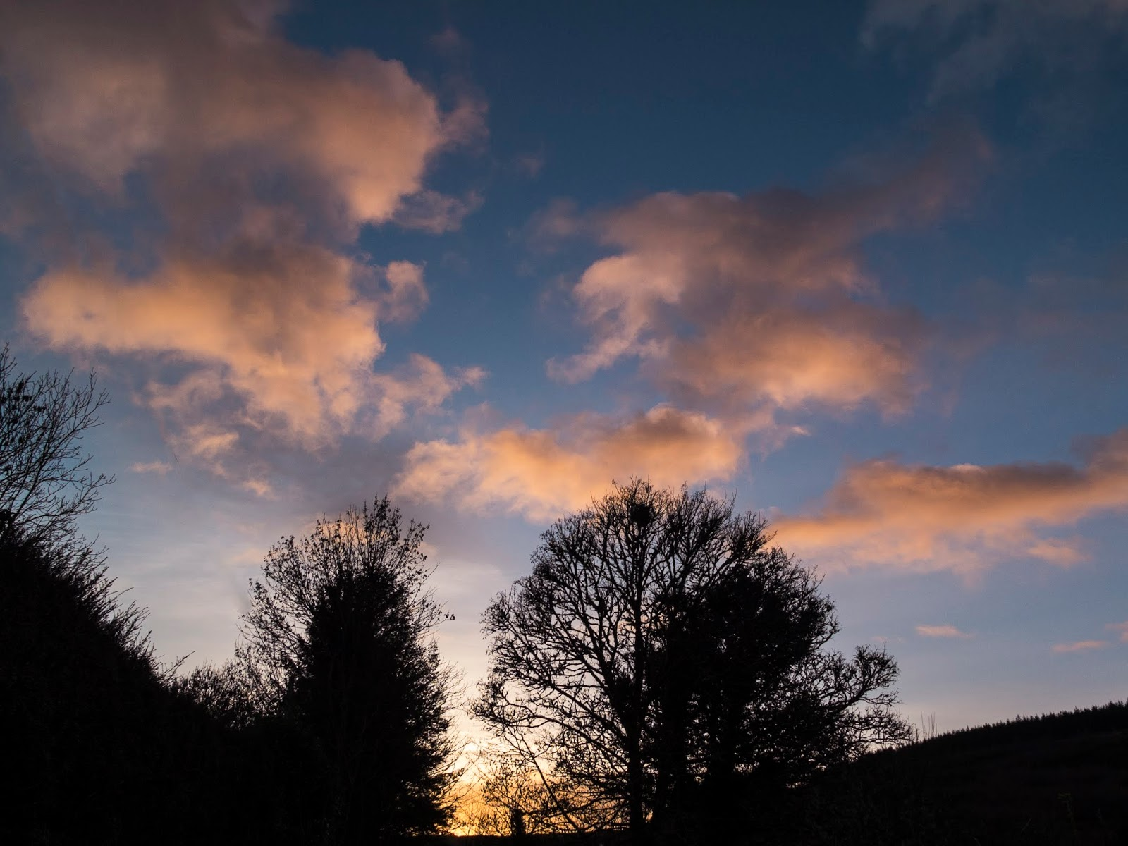 Sunset clouds over trees in a valley in North Cork.