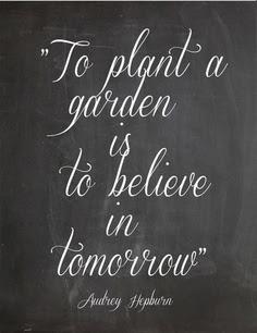 to-plant-a-garden-heyburn
