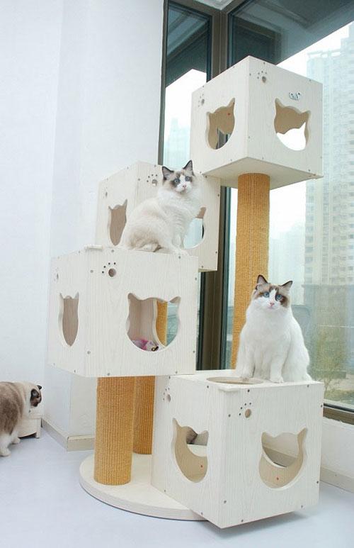 DIY Cats Head Shape Wooden Cats Tree