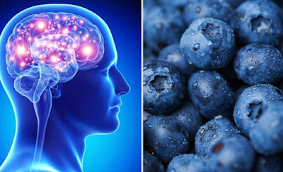 Foods That Boost Thinking Power