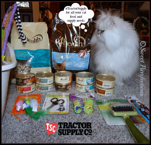 Brulee presenting the 4Health™ food and cat supplies #TractorSupply