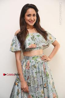 Actress Pragya Jaiswal Stills in Floral Dress at turodu Interview  0017.JPG