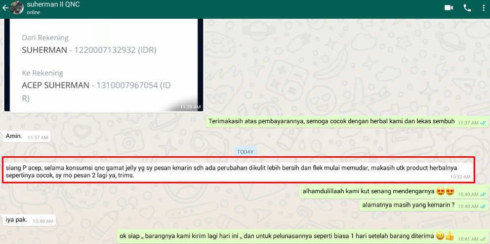 QnC Jelly Gamat Untuk Bopeng Bekas Jerawat Membandel