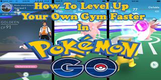 Cara Paling Cepat Menaikkan Level GYM Di Permainan Pokemon Go