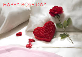 Happy Rose Day SMS in Hindi for Boyfriend