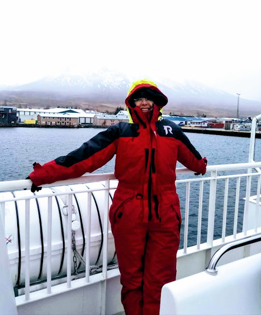 Whale watching in Akureyri Iceland