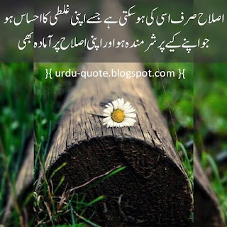 Urdu Lovely Quotes 37