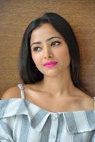 Shweta Basu Prasad Pemeran Queen Nandini di drama India Candra Nandini ANTV