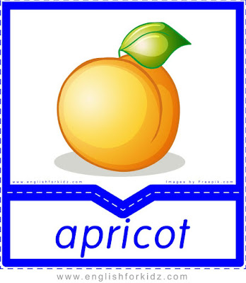 Apricot - English flashcards for the fruits and vegetables topic