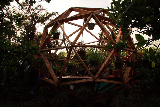O2 Tree House