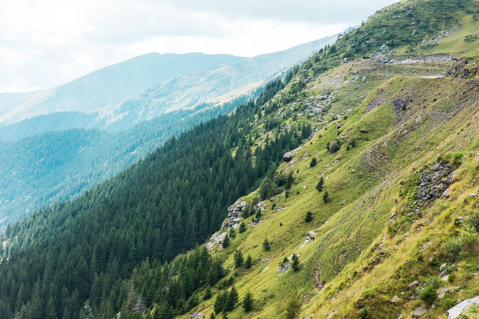 górski stok