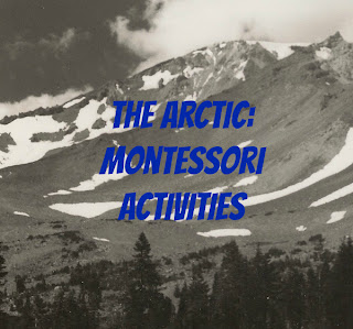Arctica and Antarctica Montessori Activities