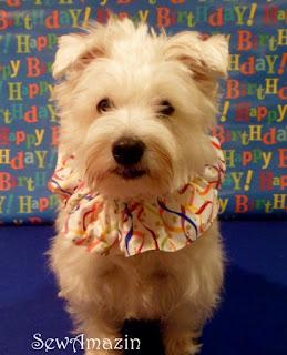 Happy Birthday Scrunchie Neck Ruffle