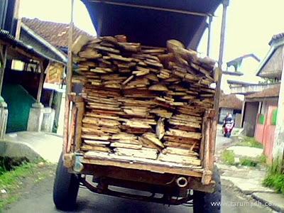 pengangkutan kayu secara tradisional untuk bahan baku