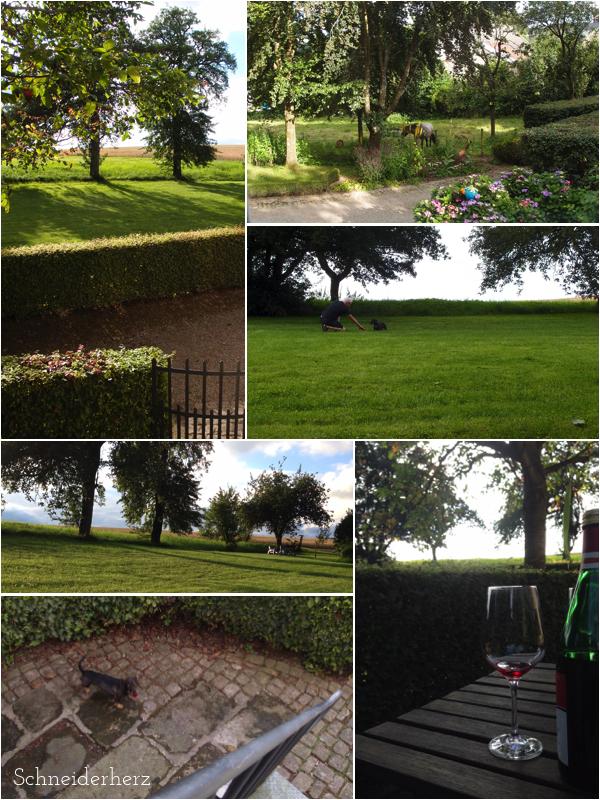 Urlaub Eifel Ferienwohnung mit Hund Gartenanlage