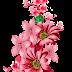 Vector Art Flower Design 2200