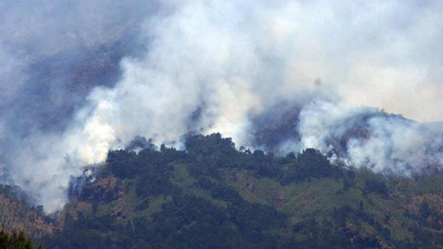 Habiskan Dana Rp1 Trliun Untuk Tangani Kebakaran Hutan di Sumsel
