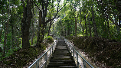 That arduous climb to the top, I lost count after the first few hundred steps. Luckily, there's an easier way to do this