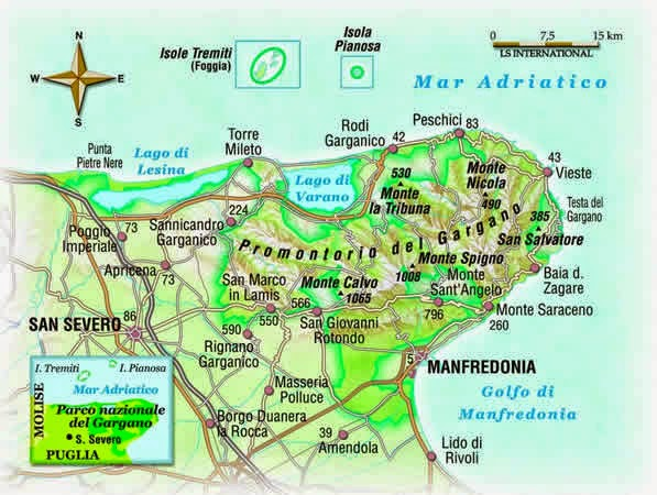 Foggia Nuova linfa al Parco Nazionale del Gargano Nominato il nuovo direttivo  La Gazzetta