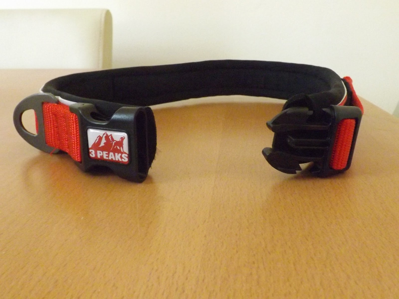 del 39 s adventures a uk rottweiler dog blog three peaks dog collar review