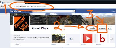 Contact Zemalf via Facebook