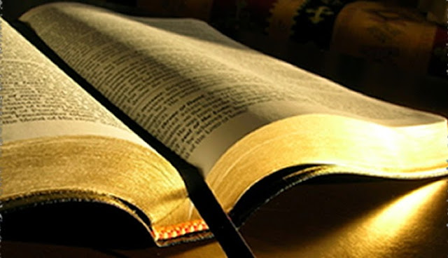 Image result for Bibles