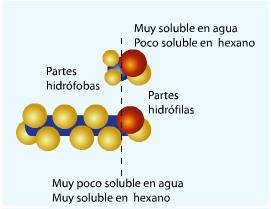 Energía Y Consumo De Substancias Fundamentales 16i