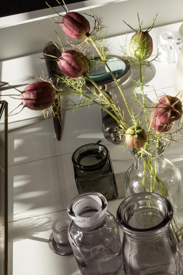 fim.works | Fotografie.Leben.Wohnen. | Floristik | Kapseln von der Jungfer im Grünen