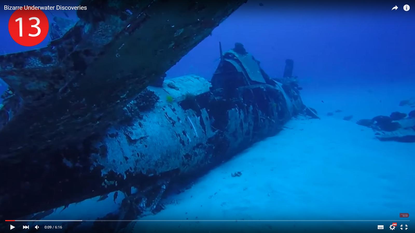 VIDEO Amp GALLERY 13 Bizarre Underwater Discoveries