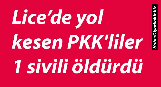 Diyarbakır Lice'de yol kesen PKK'liler 1 sivili öldürdü