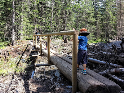 Heart Creek Trail