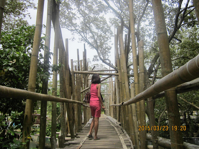 Misamis Occidental Aquamarine Park