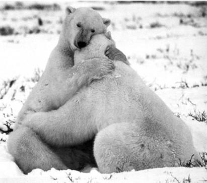 Síndrome coleccionista: ¿Porqué un abrazo debe durar más de seis ...