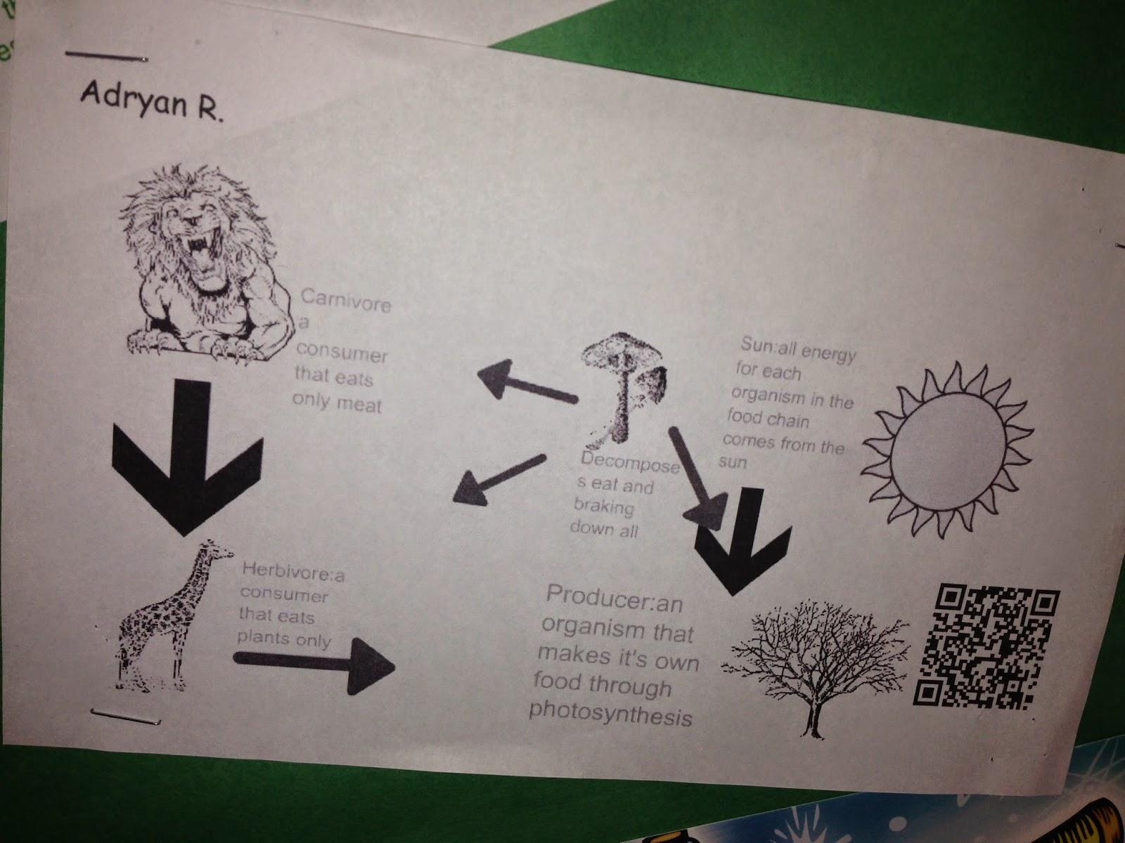 Batchko S Bytes Students Create With Educreations