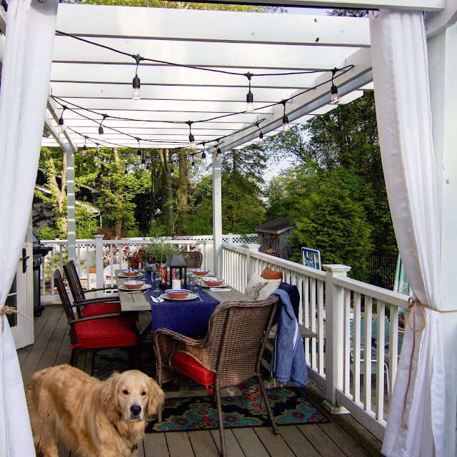 Golden Retriever on outdoor porch