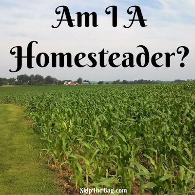 What are homesteaders? Do I qualify?