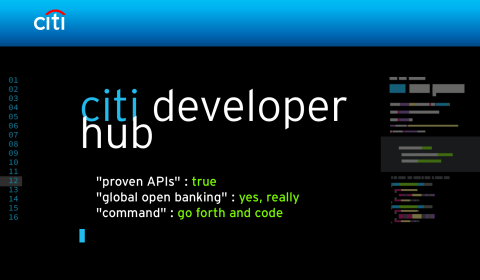 Citi Developer Hub