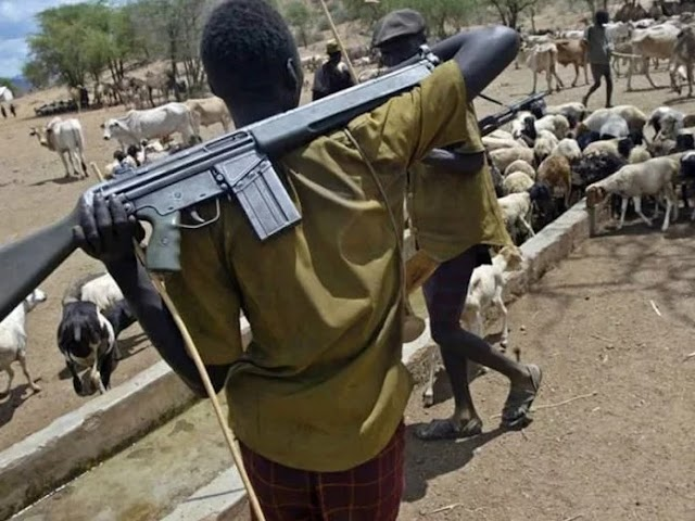 WE CAN END KILLING BY HERDSMEN - FULANI GROUP CLAIMS