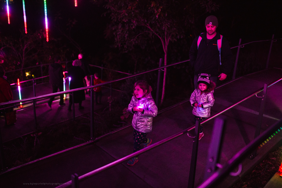Vivid Sydney festival at Taronga Zoo