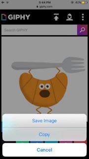 Cara Menyimpan GIF di iPhone dan iPad di iOS 11