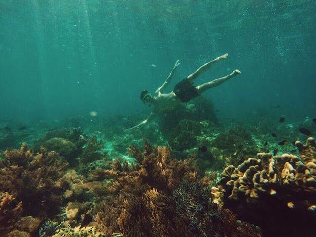 foto snorkeling di pantai pink lombok