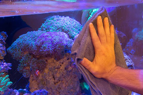 how to move a fish tank without emptying it