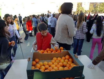 Agricultura priorizará la financiación de fruta ecológica, de proximidad y con sello de calidad que se consuma en los colegios