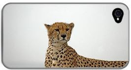 i-phone case with image of cheetah