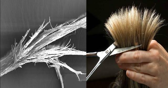 خدع بسيطة للتقليل من تساقط وتقصف الشعر