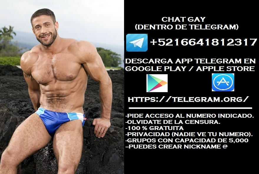 chat gay movil